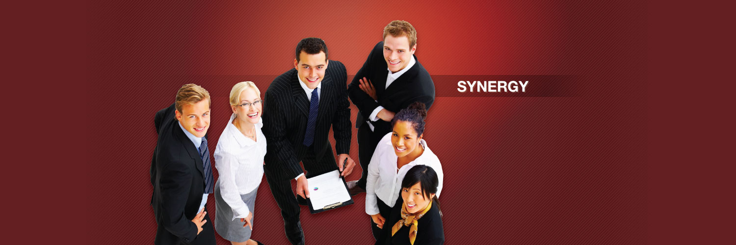 We are your management consultant, We strengthen your wings to fly high!